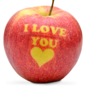 apple-i-love-alekri